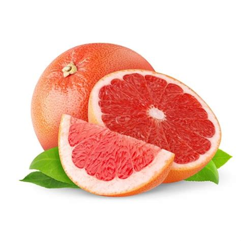 g fruit j g fruit s r o veľkoobchod ovocia a zeleniny