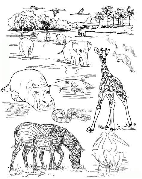 zoo malvorlagen ausdrucken 2