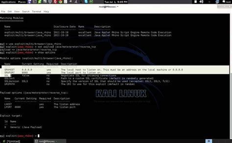 tutorial on hacking with kali linux the module exploits a vulnerability in the rhino
