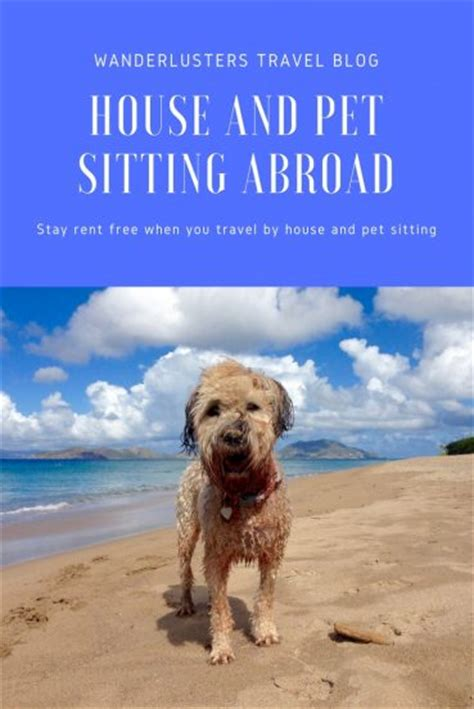 Book Your Travel To Dreamland Pet Pet Pet Product by House Sitter Faqs Your Guide To Securing Your