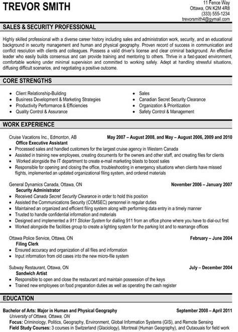 sales security professional resume sle resume