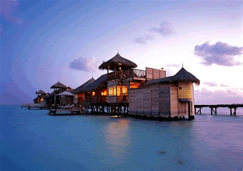 fiji bungalows a travel writer s world the birth of the water bungalow