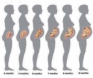фото беременность 20 21 неделе