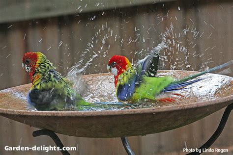 colorful bird baths bird baths backyard decorative bird heated metal