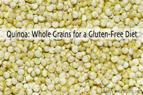 does whole wheat have gluten quinoa whole grains for a gluten free diet