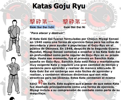 the kata and bunkai of goju ryu karate the essence of the heishu and kaishu kata books katas goju ryu geki sai dai ichi karate addiction