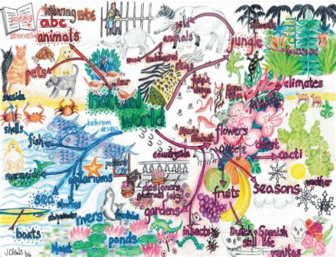 patterns in nature mind map natural world mind map art