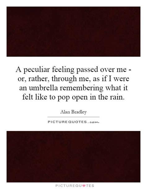 Wedding Umbrella Quotes by Umbrella Quotes Umbrella Sayings Umbrella Picture Quotes