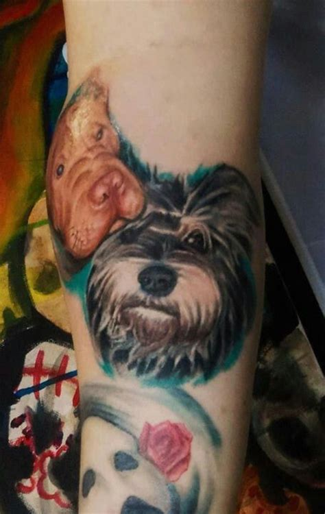 schnauzer tattoo my mini schnauzer portrait of gizmo my tattoos