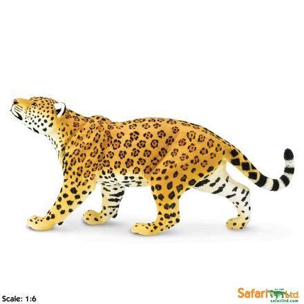 safari wildlife wonders: safari jaguar 00034