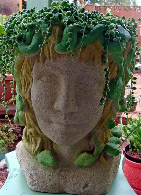 medusa planter medusa with a string of pearls head planters