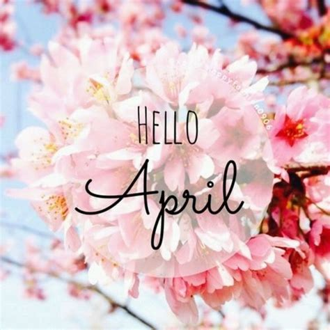 hello april pictures photos and images for