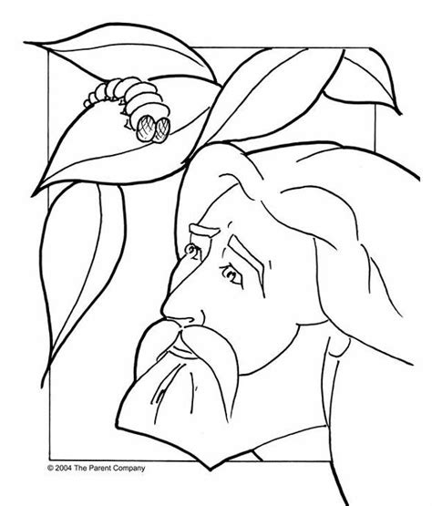 jonah vine coloring page ڷٱ jonah coloring 䳪 ĥڷ daum ī