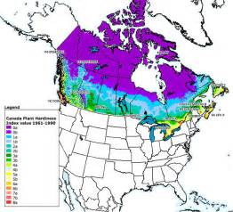 plant hardiness zones in canada everything zoomer