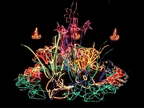 The River Of Lights by Southwestern Christmas