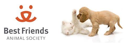 best friends animal society top 10 animal welfare organizations in the world