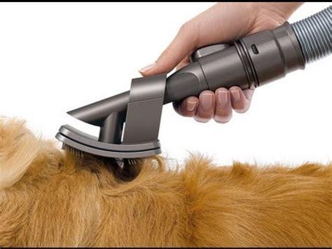 dyson groom tool tackling dog hair   source