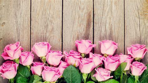 Große Nägel by Die 71 Besten Rosa Blumen Hintergrundbilder