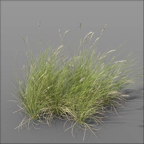 Dune 3d Model grass dune grass2 3d model