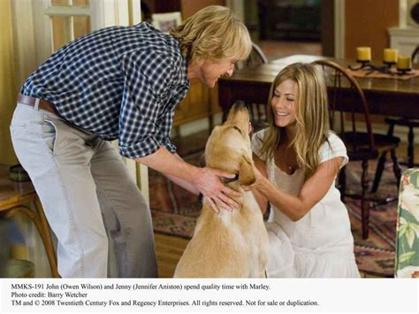 marley and me marley and me images marley and me hd wallpaper and background photos 5316201