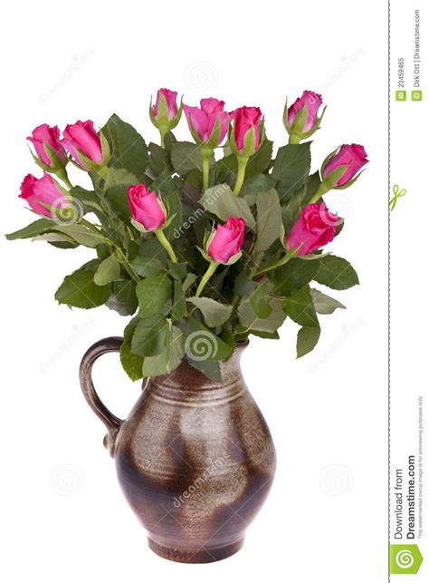 images of 6 flowers in pots flower pot with roses stock image image of decoration 23459465