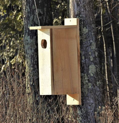 wood duck house wood duck houses going up on tear lake feederwatch