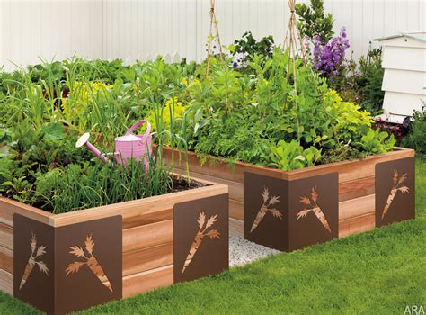 Gardening America S New Favorite Pastime Columbia News Vegetable Box Garden