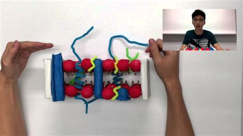 How To Make A 3d Fluid Mosaic Model