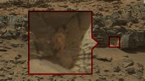 what has the lifespan nasa scientist responds to claims that curiosity rover pics show on mars ktla