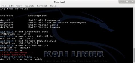 kali linux sslstrip tutorial tutorial websploit para kali linux captura de contrase 241 as