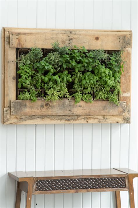 wall herb planter indoor diy indoor herb vertical wall planter gardenoholic