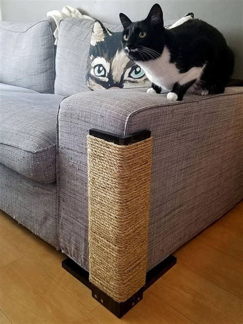 cat scratch couch best 25 cat scratching post ideas on pinterest