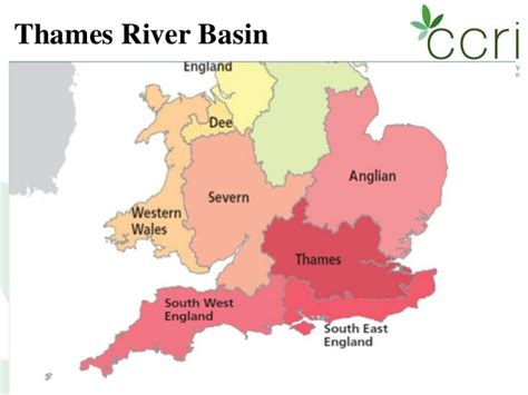 thames river basin stakeholders catchment management where s the stake