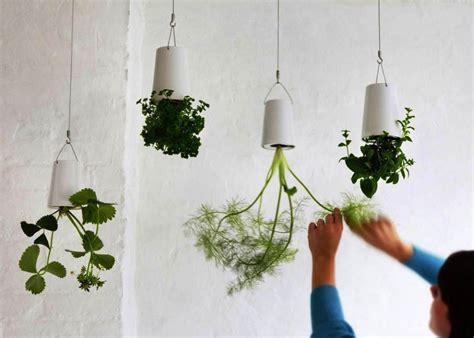 creative planter ideas  cheer   home
