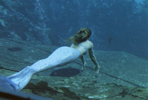 the mermaid s to see the mermaids and other stuff at columbia closings