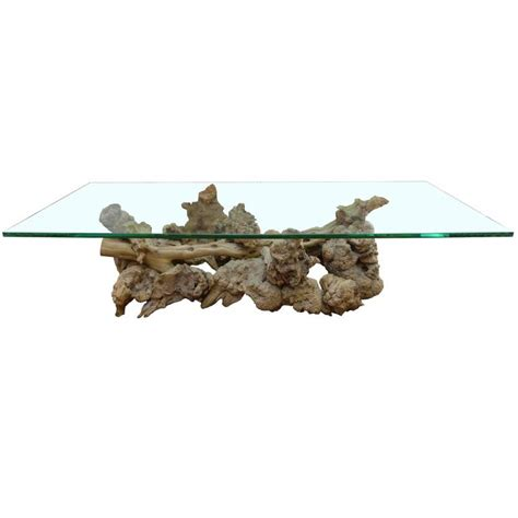 Burl And Driftwood Glass Top Coffee Table For Sale At 1stdibs Glass Top Driftwood Coffee Table