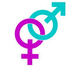 male and female signs vector image 123freevectors