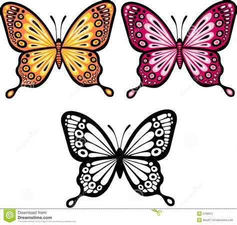 Kitchen Settings Design butterfly vector illustration stock photography image
