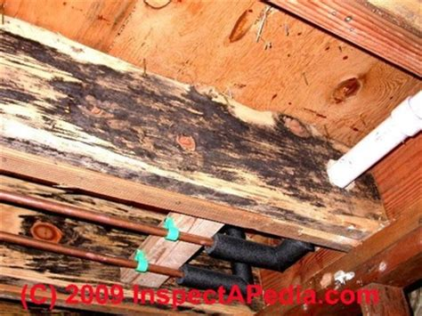 Removal of Re occurring Mold & Mildew on Wood Deck Frame