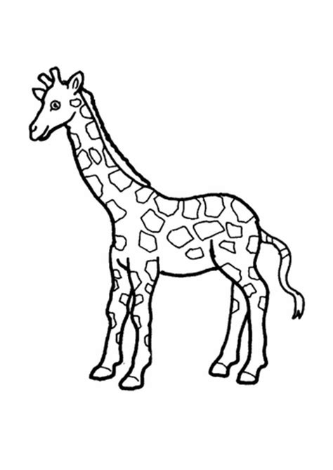 giraffes can t dance coloring pages hd wallpapers giraffes can t dance coloring pages