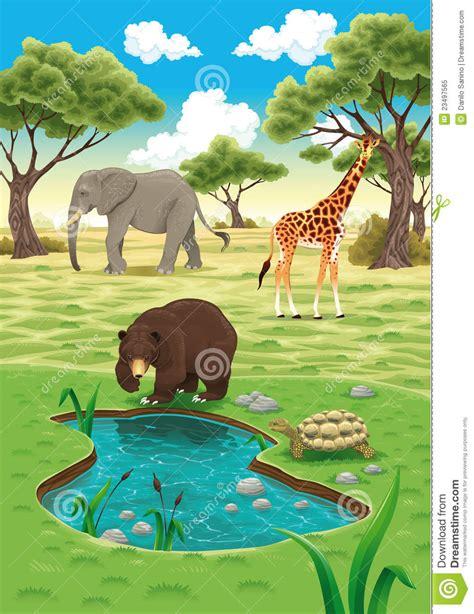 imagenes animales y naturaleza animales en la naturaleza ilustraci 243 n del vector