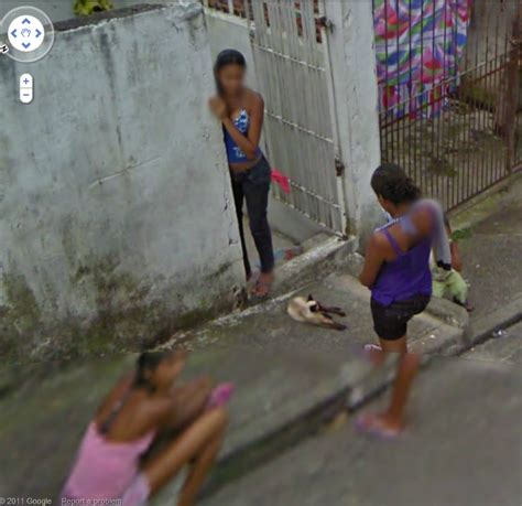 sao paulo brazil beach girls dogs of google street view dogs and a kitty in a