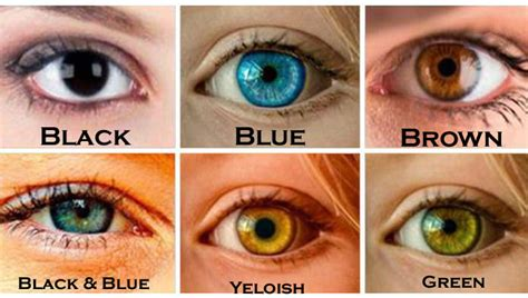 black eye color what your eye color says about your personality