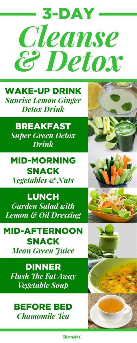 3 Day Detox Drink Diet by Best 25 3 Day Cleanse Ideas On Juice Cleanse