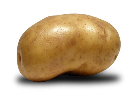 Potatoes Meaning by Gimp Polskie Forum Użytkownik 243 W Gimp A Ziemniak