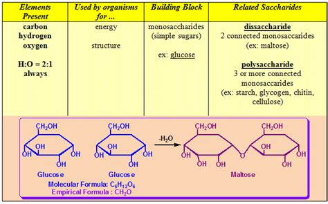 source of energy for living organisms sugar and