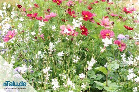 naturgarten gestalten naturgarten anlegen naturnah lebensfreundlich gut