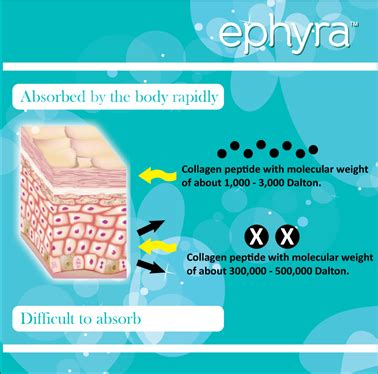Collagen Ephyra mall kolagen ephyra