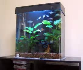 15 Gallon Tall Aquarium What's your tank history?   Aquarium Advice