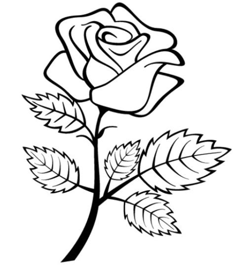 sket tattoo kartun gambar mewarnai bunga mawar terbaru gambarcoloring